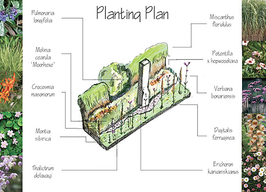 planting_plan_s